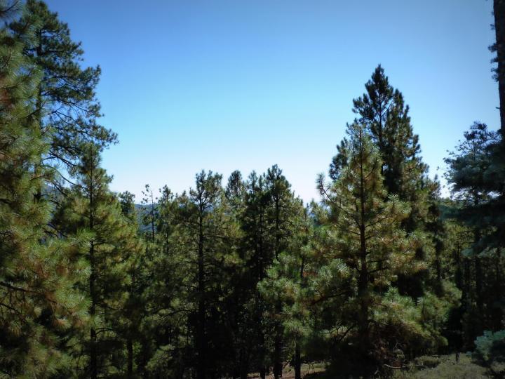 1500 E Forest Service Rd 12488 Prescott AZ Home. Photo 12 of 40