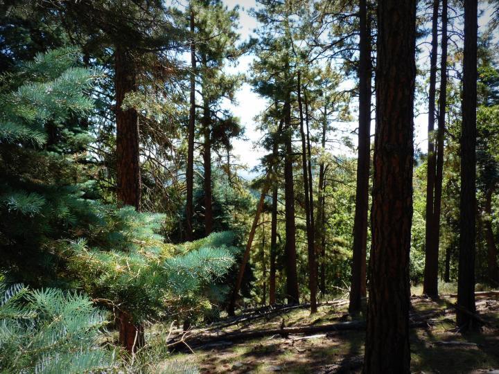 1500 E Forest Service Rd 12488 Prescott AZ Home. Photo 15 of 40