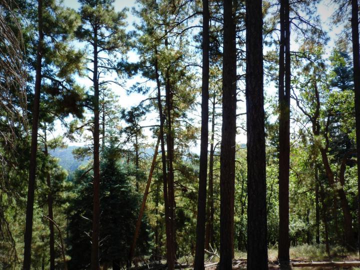 1500 E Forest Service Rd 12488 Prescott AZ Home. Photo 25 of 40