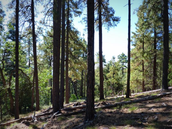 1500 E Forest Service Rd 12488 Prescott AZ Home. Photo 27 of 40