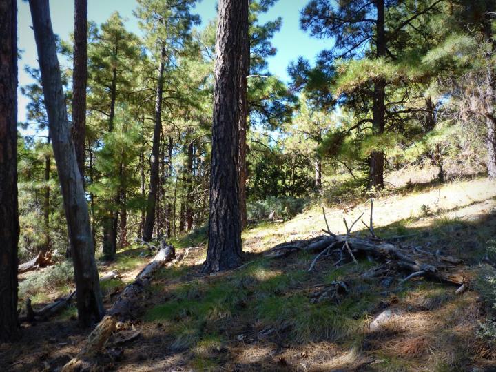 1500 E Forest Service Rd 12488 Prescott AZ Home. Photo 30 of 40