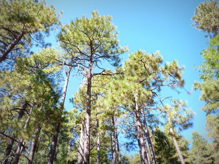 1500 E Forest Service Rd 12488 Prescott AZ Home. Photo 4 of 40