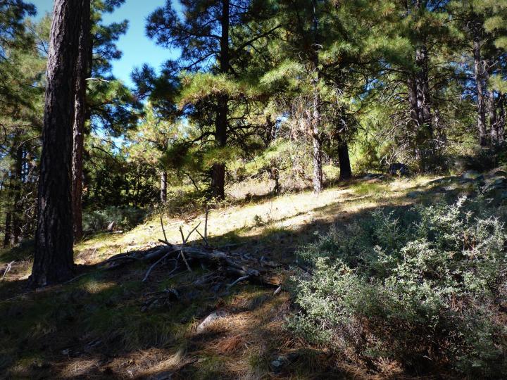 1500 E Forest Service Rd 12488 Prescott AZ Home. Photo 31 of 40