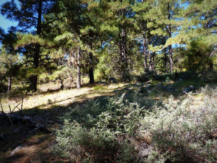 1500 E Forest Service Rd 12488 Prescott AZ Home. Photo 32 of 40