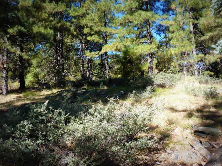 1500 E Forest Service Rd 12488 Prescott AZ Home. Photo 33 of 40