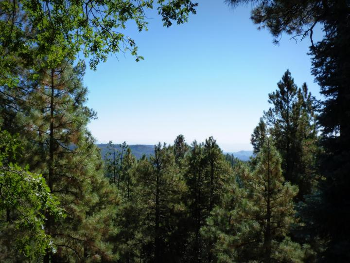 1500 E Forest Service Rd 12488 Prescott AZ Home. Photo 8 of 40