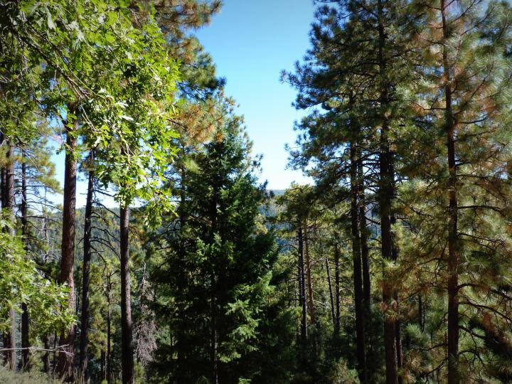 1500 E Forest Service Rd 12488 Prescott AZ Home. Photo 10 of 40