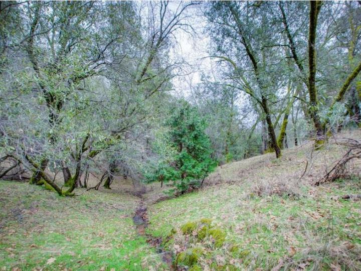15913 Fay Rd Grass Valley CA. Photo 14 of 30