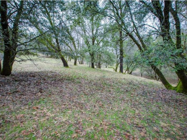 15913 Fay Rd Grass Valley CA. Photo 17 of 30