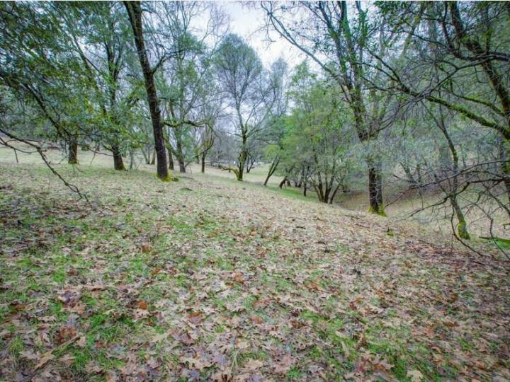 15913 Fay Rd Grass Valley CA. Photo 20 of 30