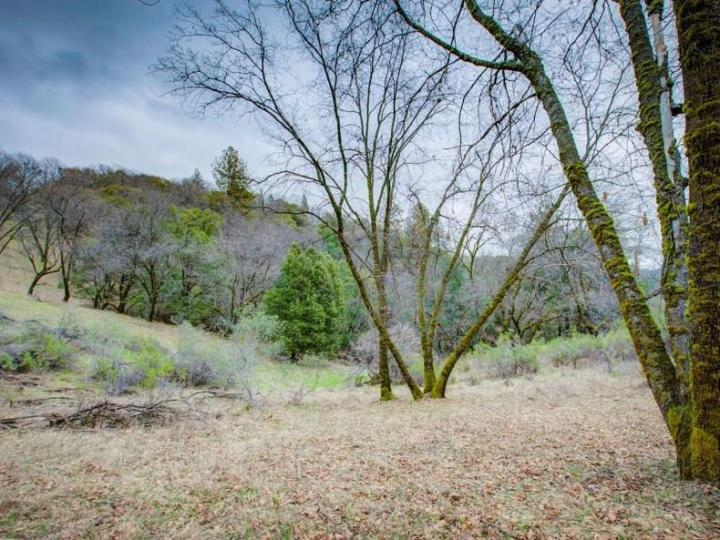 15913 Fay Rd Grass Valley CA. Photo 6 of 30