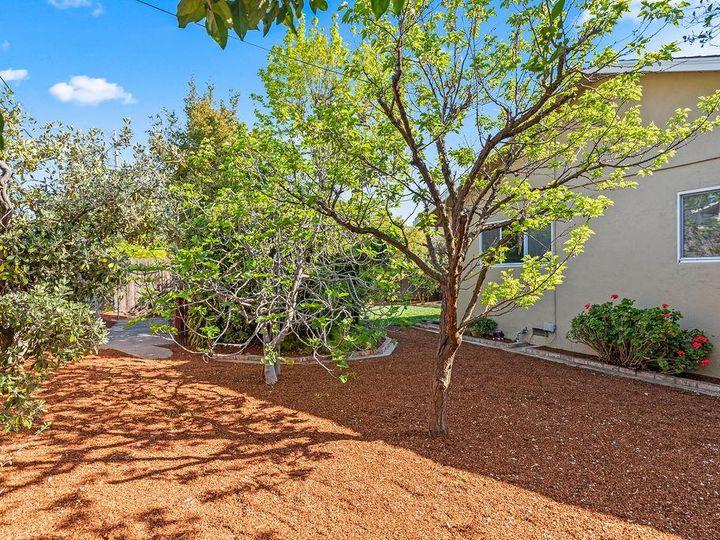 1631 Martin Ave Sunnyvale CA Home. Photo 29 of 32