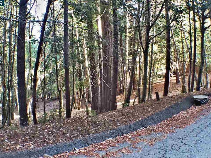 1740 Buckeye Rd Willits CA. Photo 6 of 7