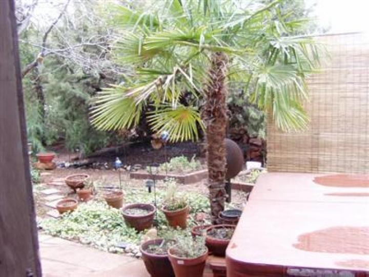 175 Essex Ave Sedona AZ Home. Photo 12 of 16