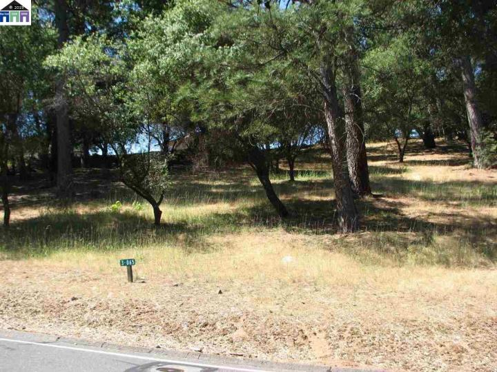20438 Pine Mountain Dr Groveland CA. Photo 15 of 15