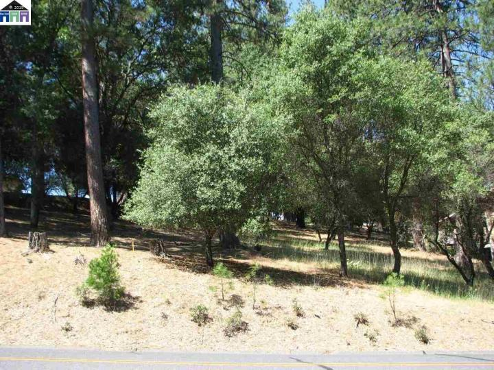 20438 Pine Mountain Dr Groveland CA. Photo 3 of 15
