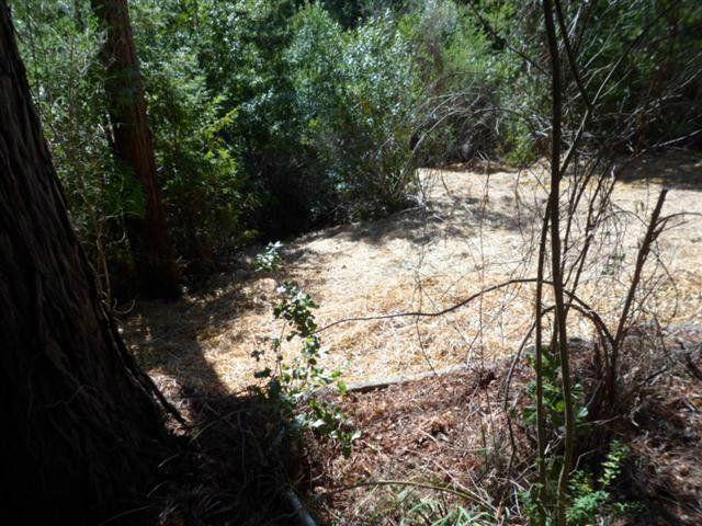 24230 Glenwood Dr Scotts Valley CA. Photo 11 of 12