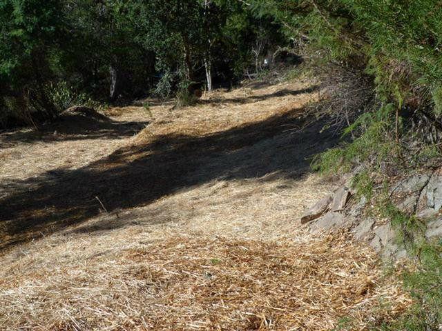24230 Glenwood Dr Scotts Valley CA. Photo 12 of 12