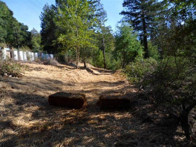 24230 Glenwood Dr Scotts Valley CA. Photo 5 of 12
