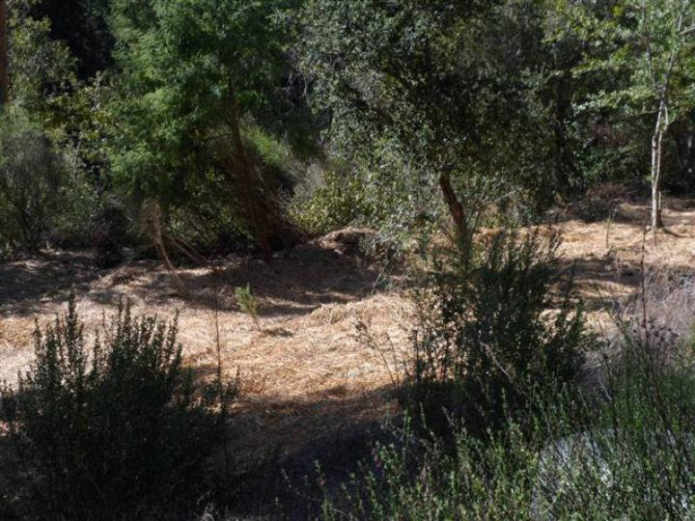 24230 Glenwood Dr Scotts Valley CA. Photo 8 of 12