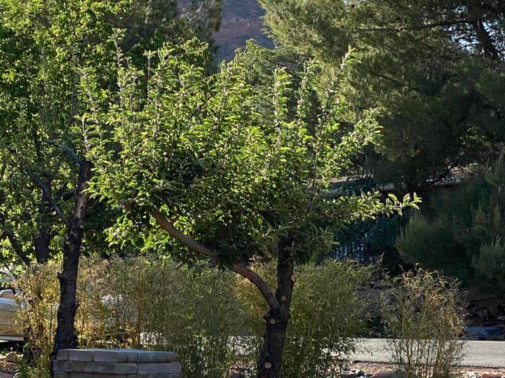 2515 Metate Dr Sedona AZ Home. Photo 29 of 33