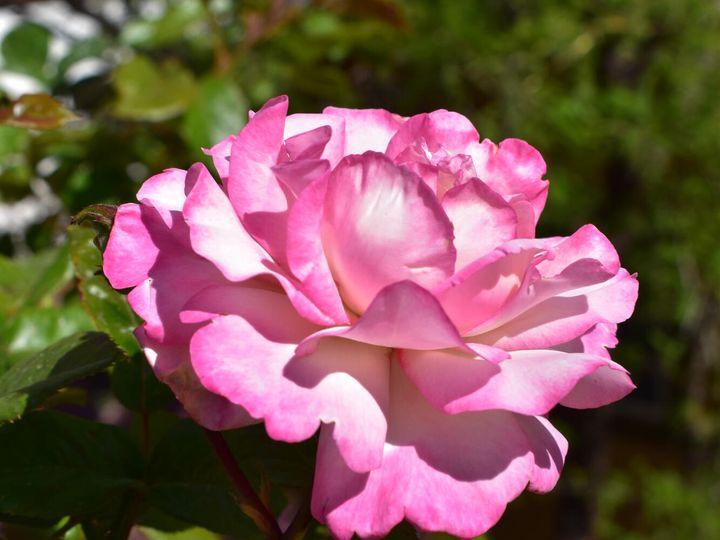275 Dundee Jerome AZ Home. Photo 2 of 4