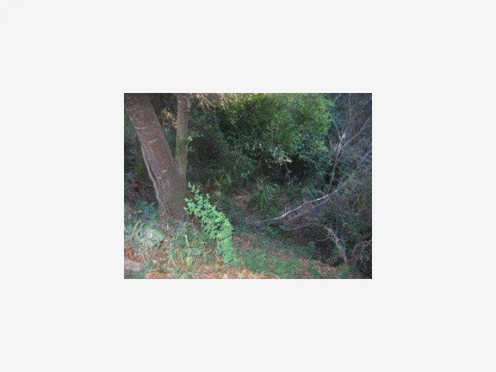 3305 Redwood Dr Aptos CA. Photo 2 of 2