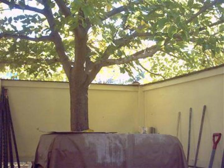3485 E Mission Ln Cottonwood AZ Home. Photo 7 of 7