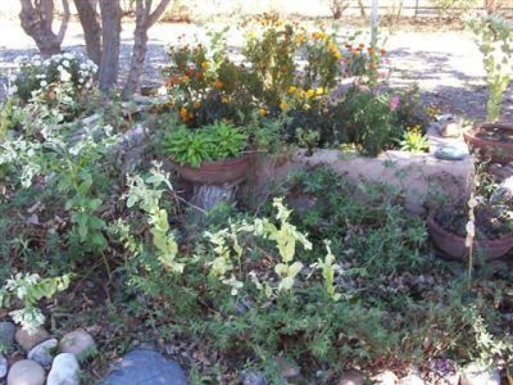 4060 E Garden Ln Cottonwood AZ Home. Photo 7 of 11