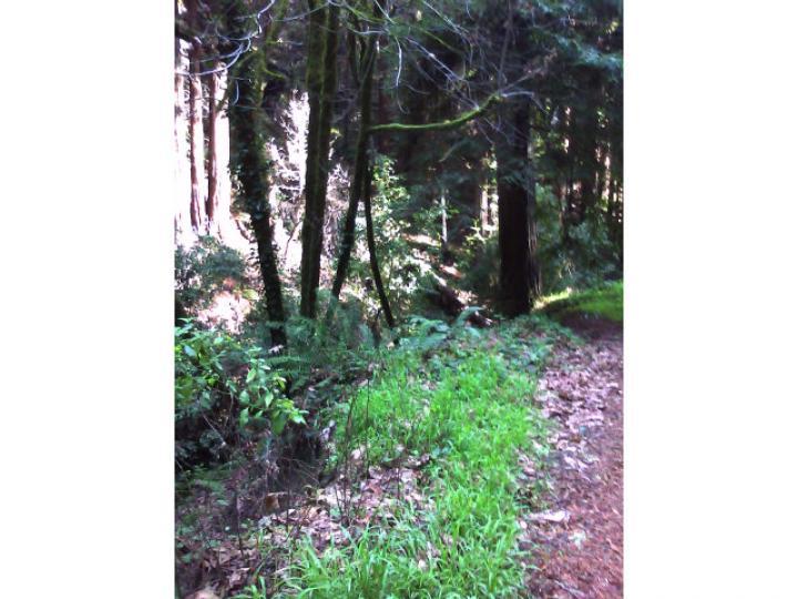 50 Redwood Rd  CA. Photo 2 of 5