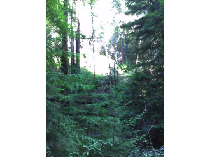 50 Redwood Rd  CA. Photo 4 of 5