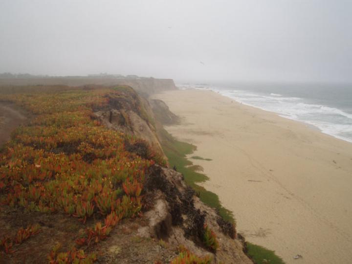 Bella Vis Half Moon Bay CA. Photo 8 of 8