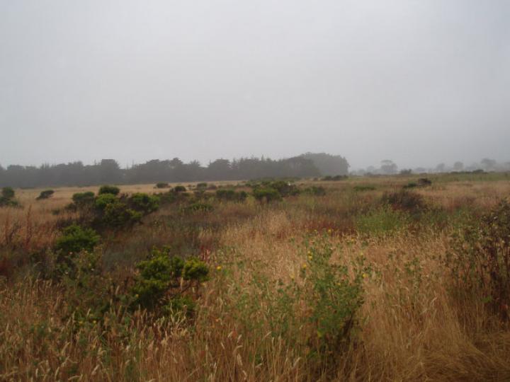 Fairview Ave Half Moon Bay CA. Photo 3 of 8
