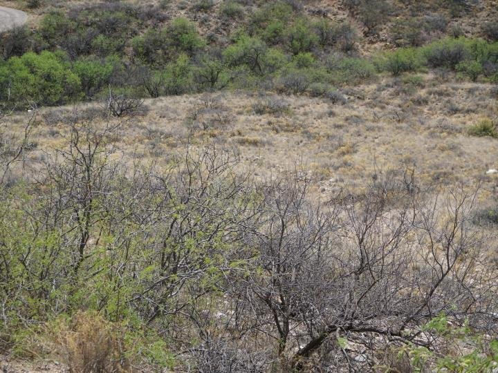 Hollow Reed Ln Clarkdale AZ Home. Photo 7 of 9