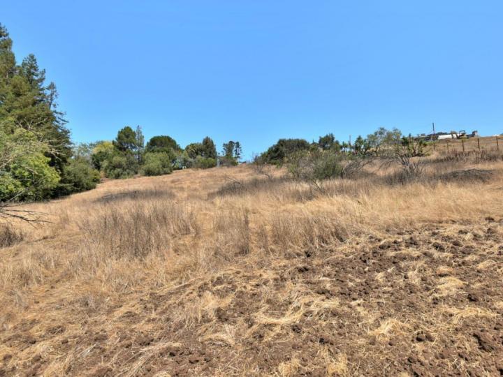 Old Adobe Rd Palo Alto CA. Photo 2 of 5