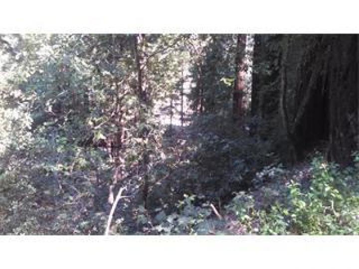 Redwood Rd Felton CA. Photo 1 of 4
