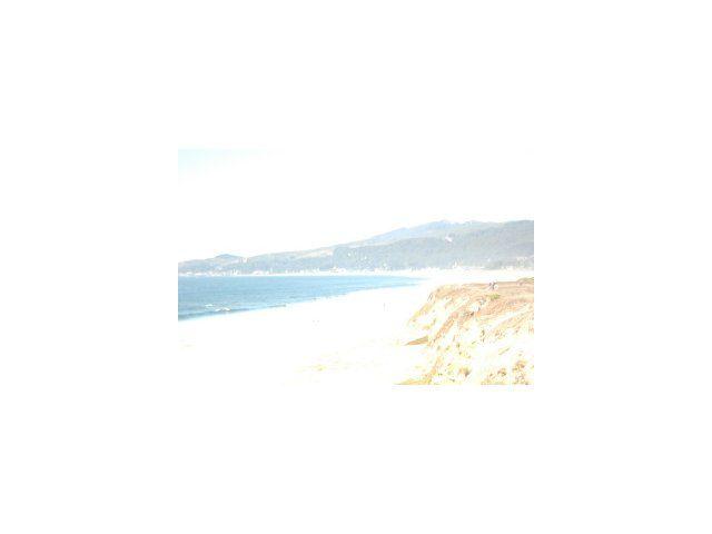 Spruce Half Moon Bay CA. Photo 3 of 3