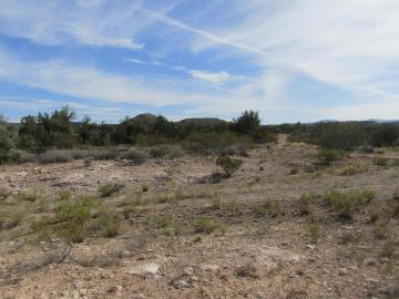 00 Desert Willow, 5 Acres Or More, AZ
