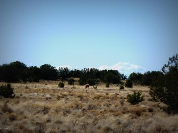 01 Headwater Rnch, 5 Acres Or More, AZ