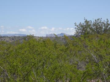 1 Camino Vista Dr, 5 Acres Or More, AZ