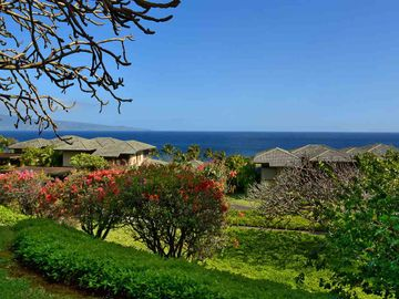 1013-15 Ridge Rd unit #1013-15, Kapalua, HI