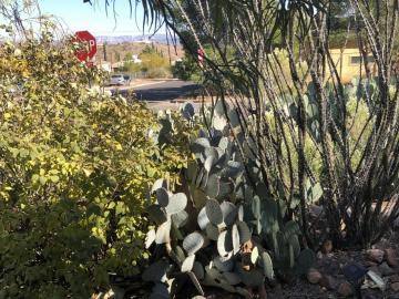 1000 Calle Rosas, Cntrville Sub, AZ