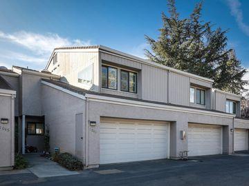 1041 Villa Maria Ct, San Jose, CA
