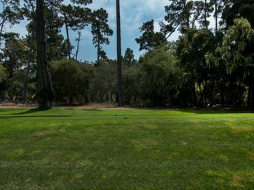 1066 Spyglass Woods Dr, Del Monte Forest, CA
