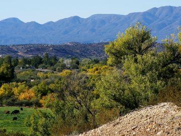 11004 E Majestic Vista Ln, Rio Bonito Ranch, AZ
