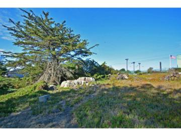 1355 Lighthouse Ave, Pacific Grove, CA