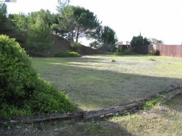 1447 Scenicview Dr, San Leandro, CA