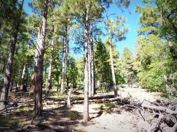 1500 E Forest Service Rd 12488, 5 Acres Or More, AZ