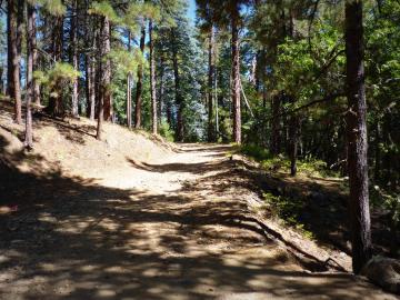 1500 E Forest Service Rd 12488 Prescott AZ Home. Photo 3 of 40