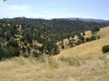 15150 W Corral Hollow Rd, Tracy, CA